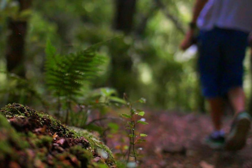 Hiking – Biking